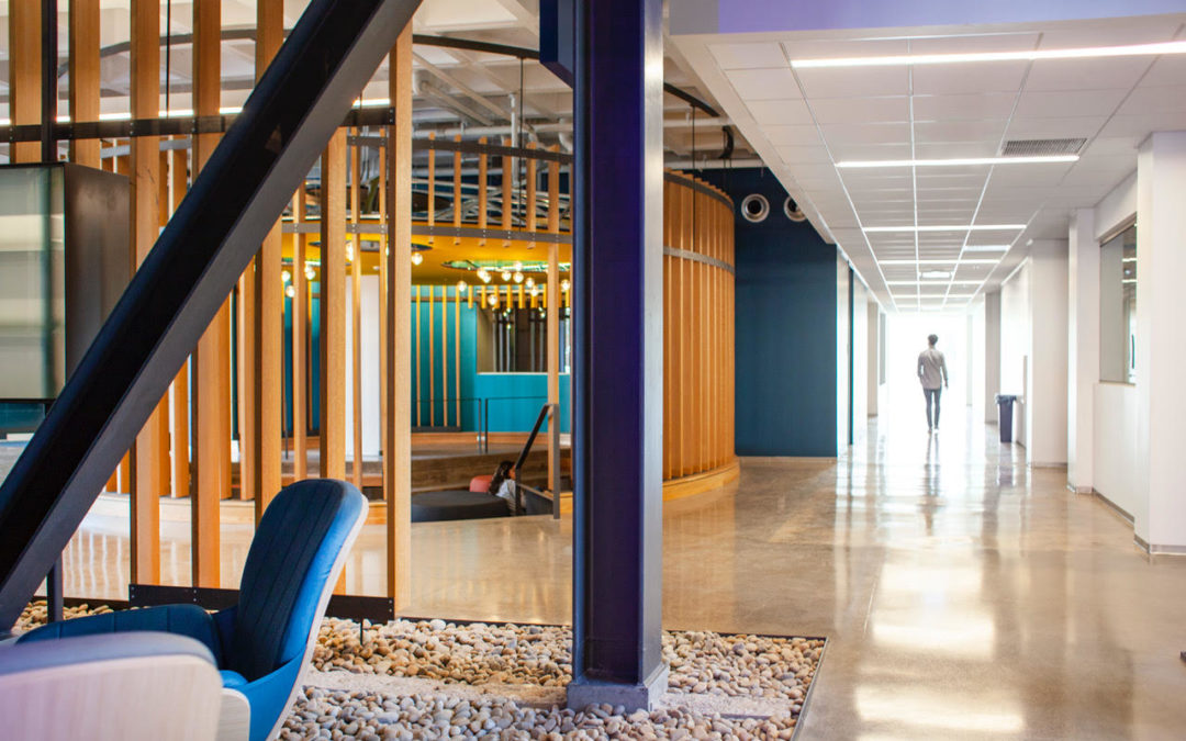 Holly Street Studio renovates, transforms iconic 1960s building on Phoenix College campus to modern teaching facility