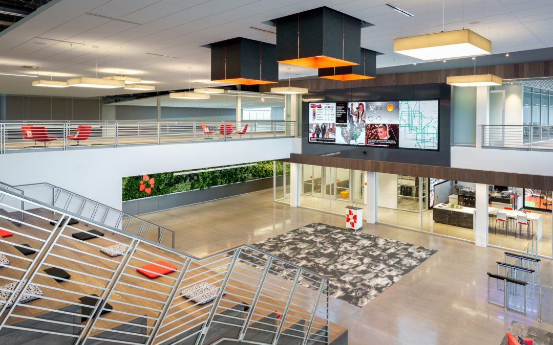 McCarthy Nordburg brings timeless design to pair of Phoenix law firms, innovative design to new headquarters for P.F. Chang's and Zovio